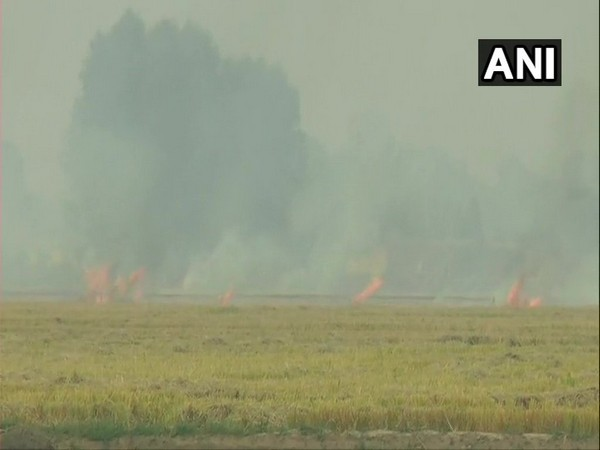 Farmers in Ludhiana continued to burn stubble on Thursday.