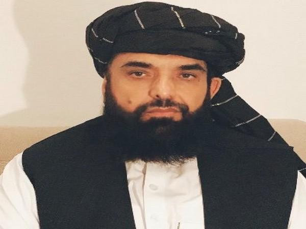 Qatar-based spokesperson of Taliban Suhail Shaheen (Photo Credit: Twitter)