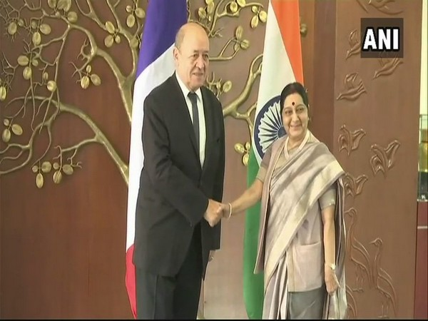 French Foreign Minister Le Drian and External Affairs Minister Sushma Swaraj in Delhi. (file photo)