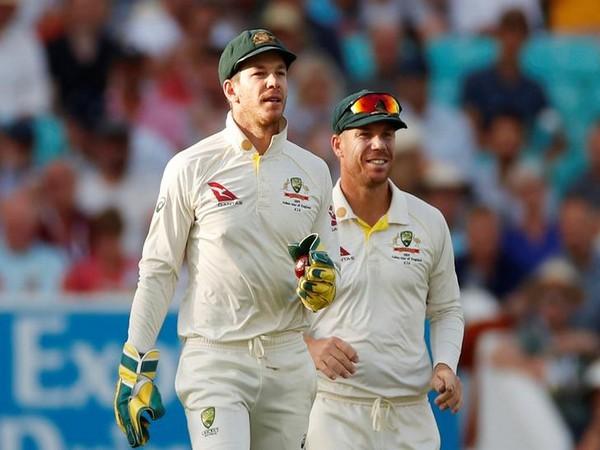 Australia Test skipper Tim Paine (file image)