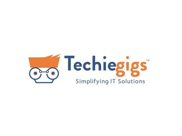 Techiegigs- Simplifying IT Solutions!