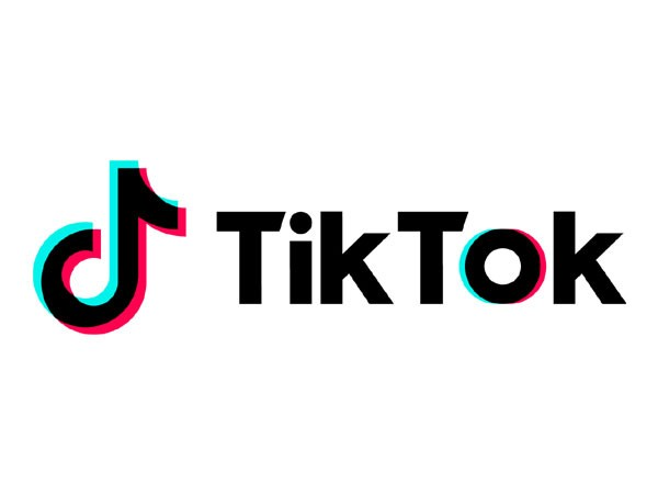 TikTok released a statement after a 12-year-old accidentally chocked himself  to death allegedly while shooting a TikTok video