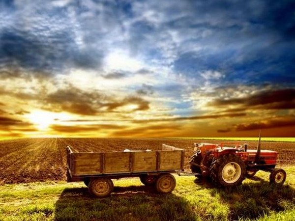 Healthy farm cash flows and monsoon progress have aided robust growth in tractor sales.