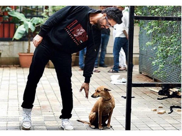 Actor Vicky Kaushal with his pawed friend (Image Source: Instagram)