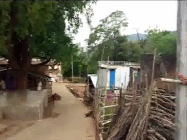 Village where an elephant herd created panic