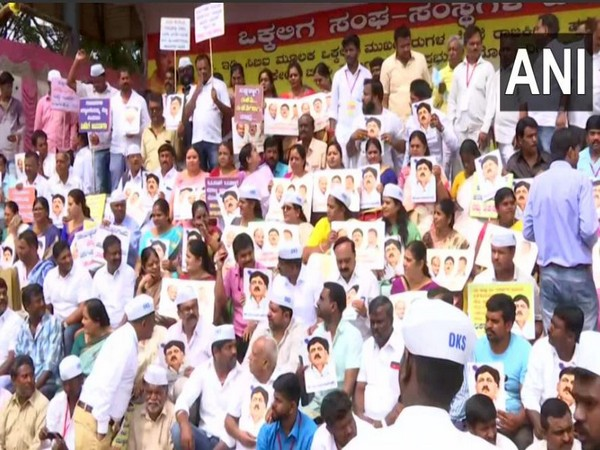 Members of the Vokkaliga Sangha protest against DK Shivakumar's arrest on Wednesday in Bengaluru. Photo/ANI