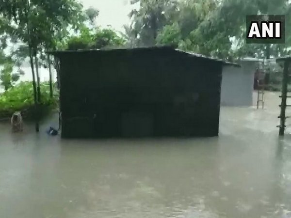 Houses submerged in Netaji Para after days of incessant rain. Photo/ANI