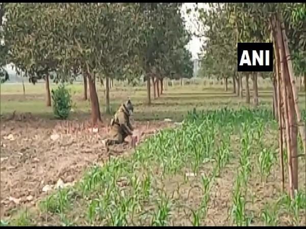 Crude bombs recovered in West Bengal's Murshidabad. (Photo/ ANI)