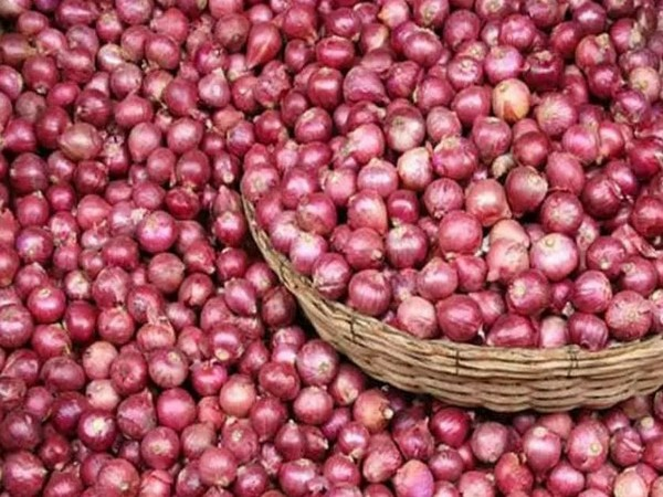 Onions saw an inflation rate of 455.8 pc versus 172.3 pc in November