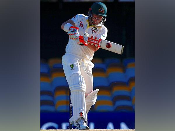 Australian cricketer David Warner (File photo)