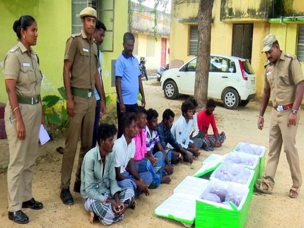 Mandapam Forest Department arrested 8 smugglers on Tuesday.