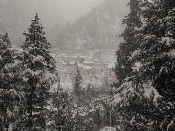Snowfall at Uttarkashi on Thursday.