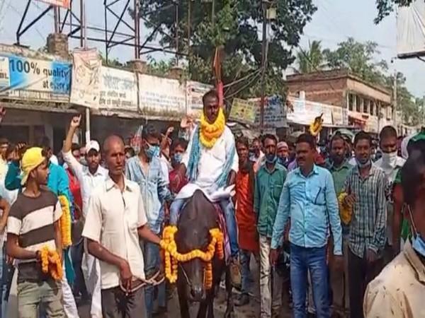 Independent candidate Nachari Mandal on his buffalo (Photo/ANI)