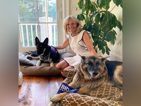 First Lady Jill Biden and the two German Shepherds -- Champ and Major Biden (Photo/Twitter)