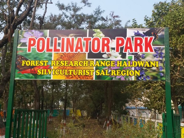 Picture from Pollinator Park