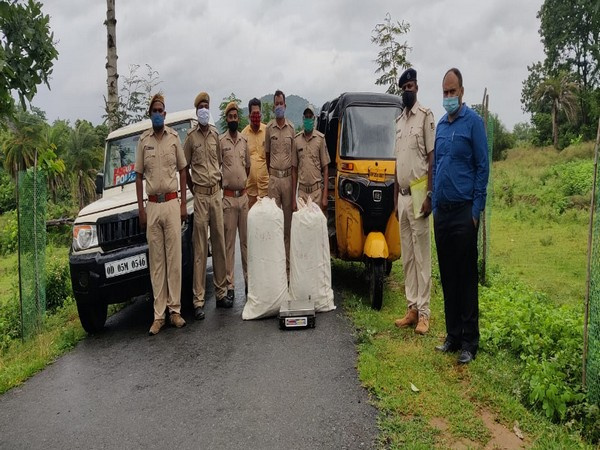 Odisha: Over 66 kg Ganja seized from auto-rickshaw in Gajapati district (Photo/ANI)