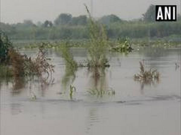 File photo of Yamuna river