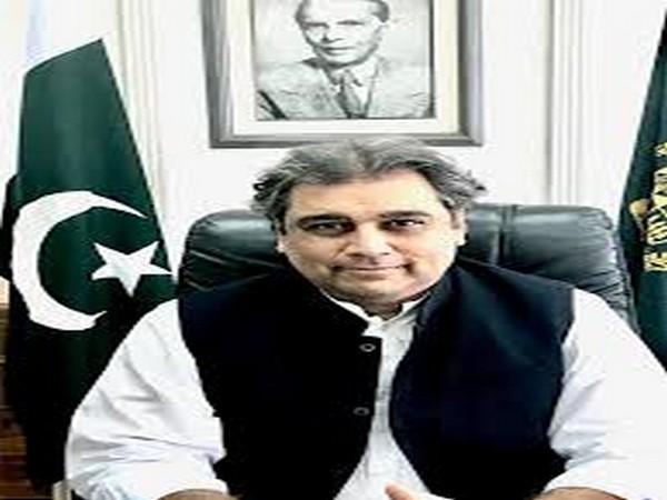 Pakistan Minister for Shipping and Maritime Affairs Ali Haider Zaidi (File photo)
