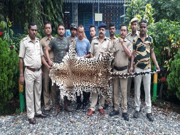 Forest officers apprehended a Bhutanese national with leopard skin in his possession on Sunday night. Photo/ANI
