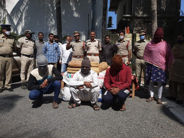 Four persons were arrested after 120 kg cannabis was seized. (Photo/ANI)