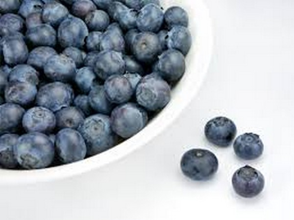 Consumption of a blueberry-enriched diet by women for six weeks alters determinants of human muscle progenitor cell function.