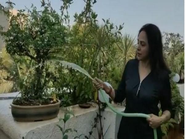 Hema Malini Channels Her Nature Love Waters Plants In Her Terrace Garden
