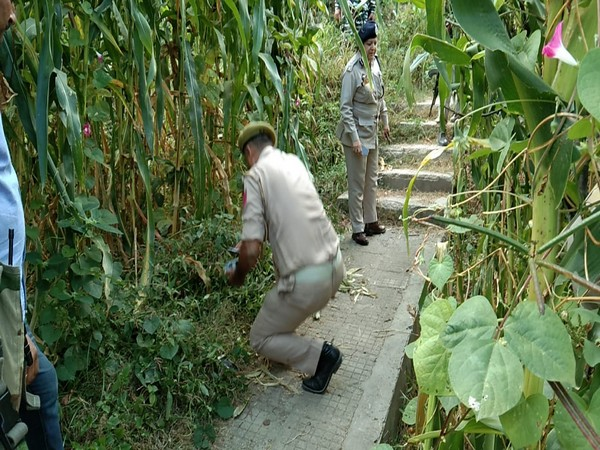 Security Forces launched a search operation after a suspect snatched a cellphone from an elderly lady.