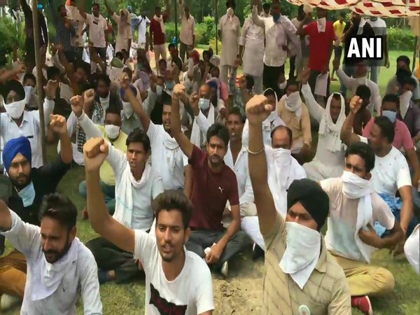 Bharatiya Kisan Union on Tuesday staged a sit-in protest in Ambala (Photo/ANI)