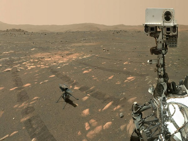 NASA's Perseverance Mars rover took a selfie with the Ingenuity helicopter (Image credits: NASA/JPL-Caltech/MSSS)