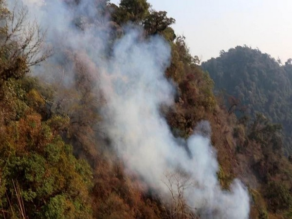 Smoke billowing out of forest from the fire. (Photo: Twitter @NBirenSingh)