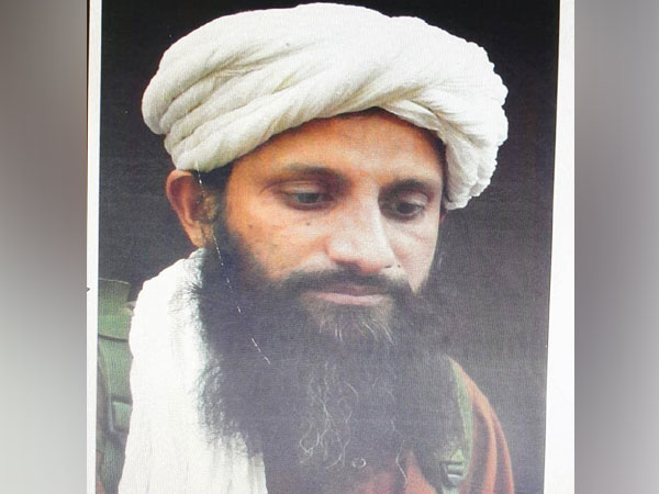 Pakistani national and Chief of al-Qaeda in the Indian Subcontinent (AQIC) Asim Umar