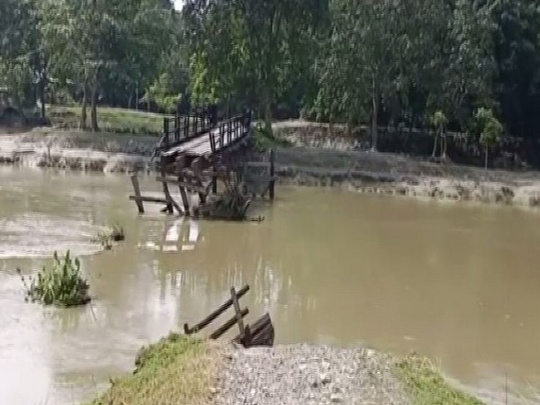 Visuals of a wooden bridge which was washed away in the flood on Sunday in Nalbari. Photo/ANI