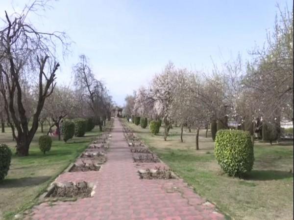 Visual from Badamwari garden