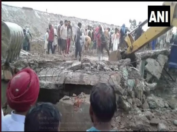 The cow shelter in Bathinda where the roof collapsed earlier on Tuesday. Photo/ANI