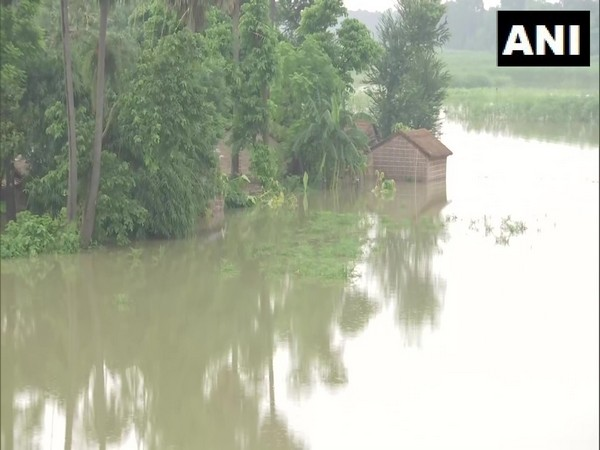 The rural parts of Samastipur district have flooded following incessant rainfall in the region. (Photo/ANI)