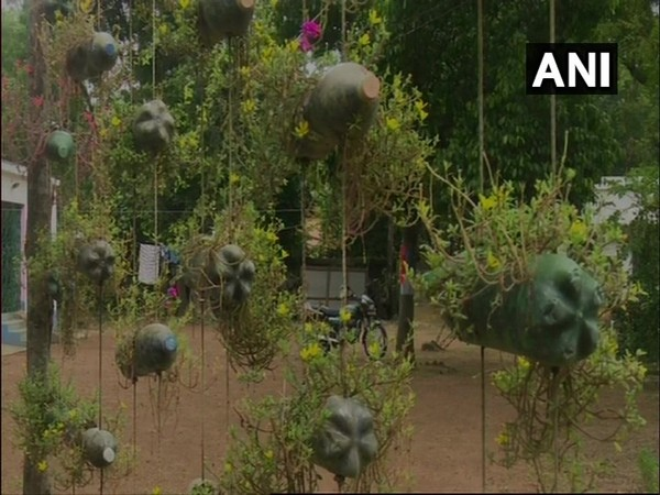Visual of the garden in Midnapore, West Bengal