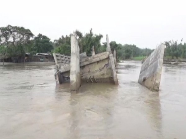 A visual of the collapsed bridge in Goabari village of Bihar's Kishanganj district. (Photo/ANI)