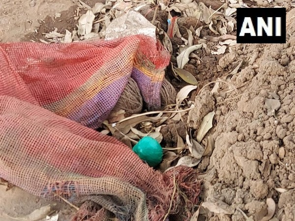 Bombs recovered in West Bengal on Tuesday. (Photo.ANI)