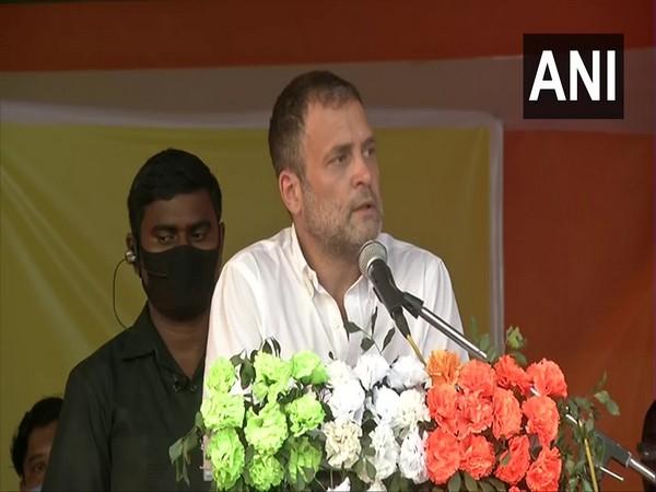 Congress leader Rahul Gandhi. (Photo/ANI)