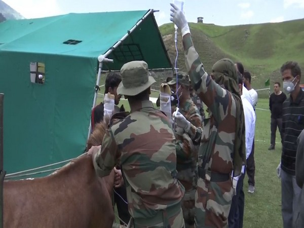 Indian Army personnel organising an Veterinary  Camp in Kupwara. [Photo/ANI]