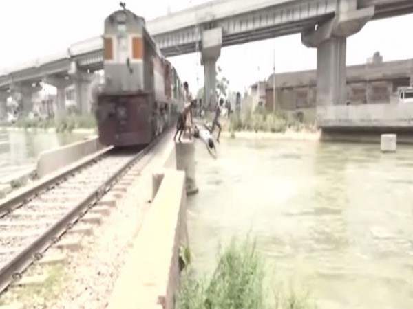 Boys jumping from railway bridge over Gill canal in Ludhiana, Punjab.