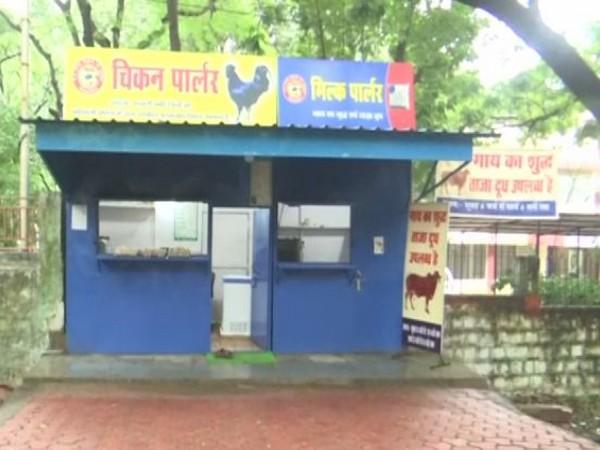 Chicken Parlour and Milk Parlour in Bhopal, Madhya Pradesh.
