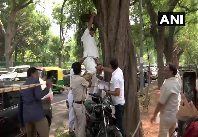 Congress worker Hanif Khan trying to hang himself from a tree outside Congress party's headquarters in New Delhi on July 2. Photo/ANI
