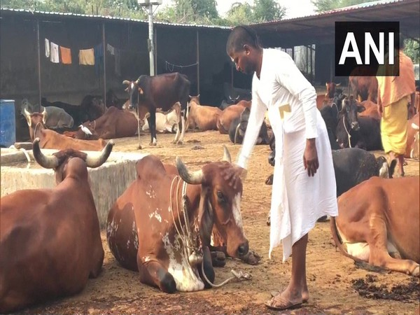 A Sadhu at Gopal Gaushala, cow-shelter in Ayodhya. (Photo/ANI)