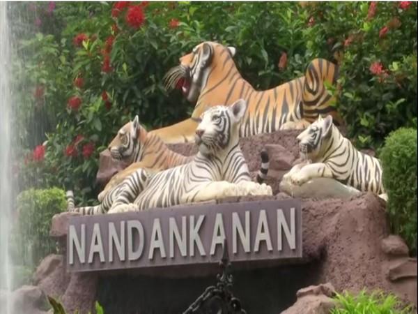 Nandankanan Zoo finally opened today. (Photos/ANI)