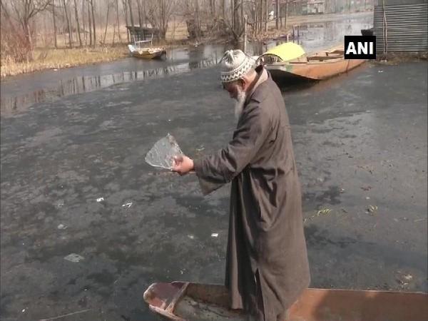 A visual of Dal Lake in Srinagar, Jammu and Kashmir.