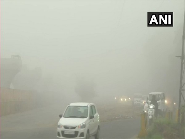 Dense fog shrouds Ludhiana, leading to poor visibility in the city on Sunday. (Photo/ANI)