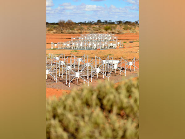 Dipole antennas of the Murchison Widefield Array (MWA) radio telescope (Image Credit: Dragonfly Media.