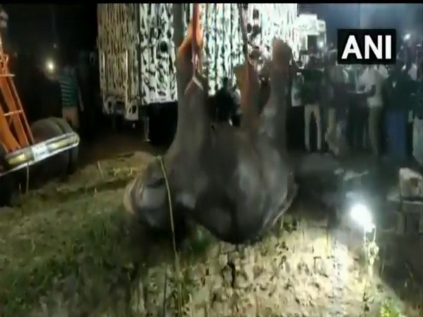 The elephant calf was rescued from the 100-foot well by the fire department. (Photo/ANI)