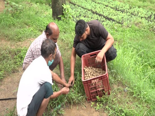 People at thenursery preparing seed balls (Photo/ANI)